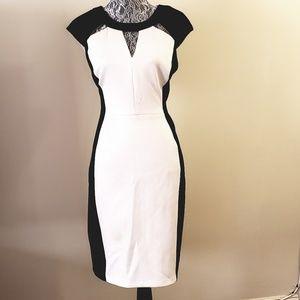 Worthington black and cream peekaboo dress